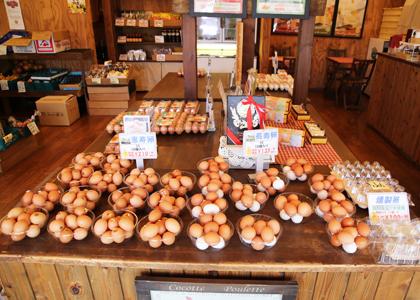 恵寿卵 長寿卵